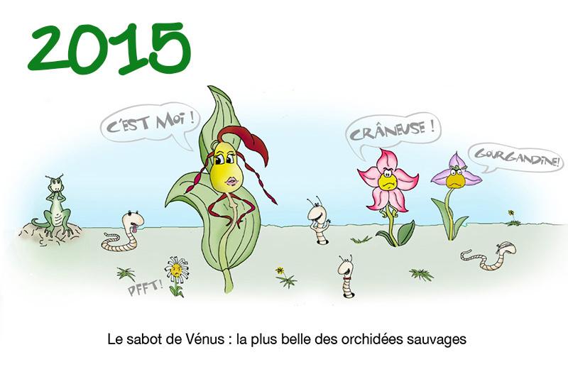 2015 - Les orchidées (dessin Achem)
