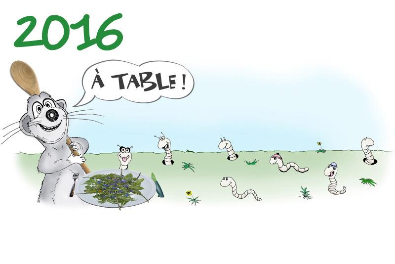 2016 - Les plantes comestibles (dessin Achem)